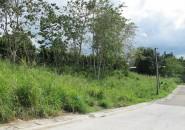 Monteritz Lots For Sale Davao City Philippines (14)