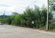 lot-for-sale-davao-city-philippines-las-terraszas-(6)