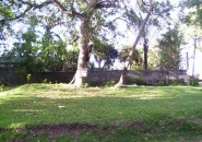 lot-for-sale-davao-real-estate-www.davaoproperties-(3)