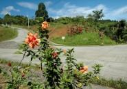 mountain-haven-davao-city-philippines-www.davaoproperties-(10)