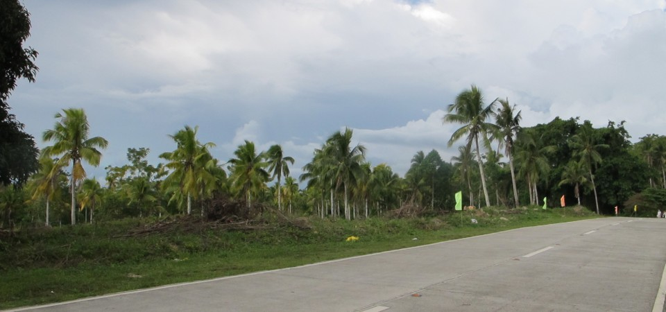 lot for sale samal island philippines (2)