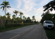overlooking lots for sale in Samal Island (14)