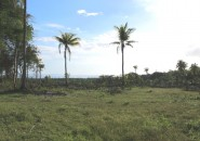 overlooking lots for sale in Samal Island (8)