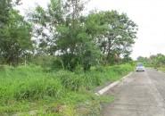 Villia Jofefina Davao Beachfront Lot For Sale (5)