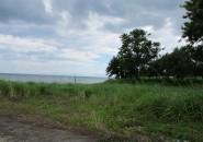Villia Jofefina Davao Beachfront Lot For Sale (9)